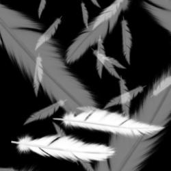 Feathers Brushes