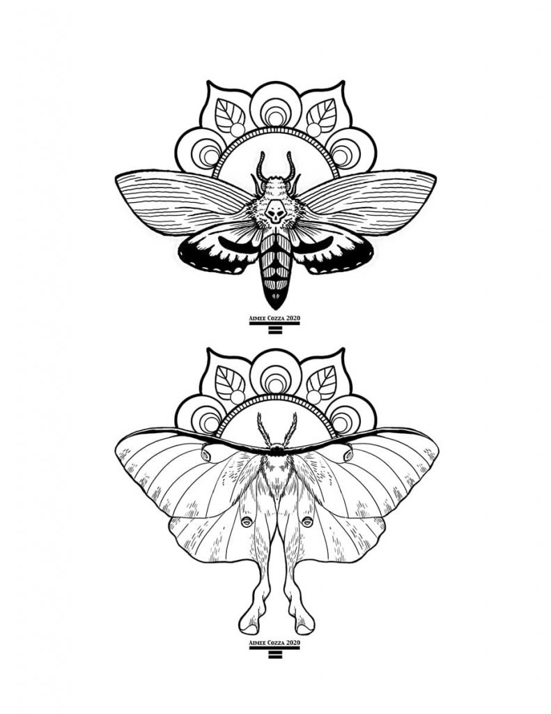 Black and white death's head moth and luna moth coloring book page