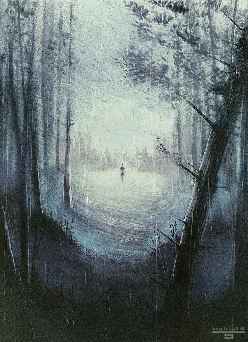 A silhouette of a human figure walking through a foggy meadow past a rainy forest